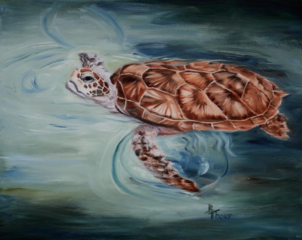 """""""Green Sea Turtle"""""""